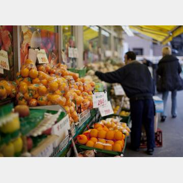 野菜や果物はビタミン、ミネラル、食物繊維、抗酸化物質などの宝庫