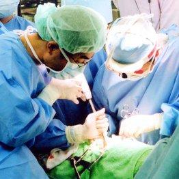 膵臓、胃以外の「がん発症」と「血液型」との関係性