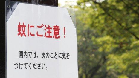 虫除け剤の成分を高濃度に 日本の「蚊対策」が本格始動?