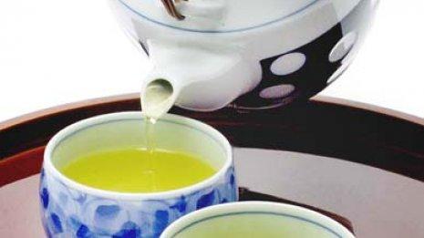 入浴前にカテキン茶を飲めば体内への吸収率は7倍へ