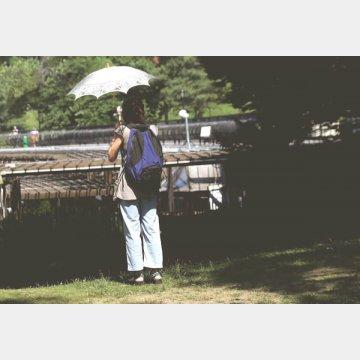 セントラルパークで日傘を手にたたずむ女性