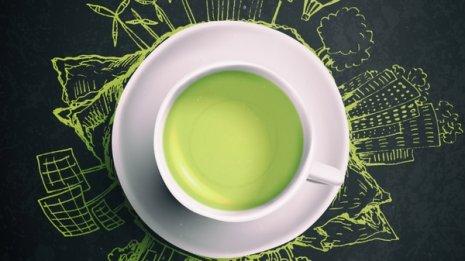 緑茶カテキンが脳卒中や心筋梗塞を防ぐ…は間違いの可能性