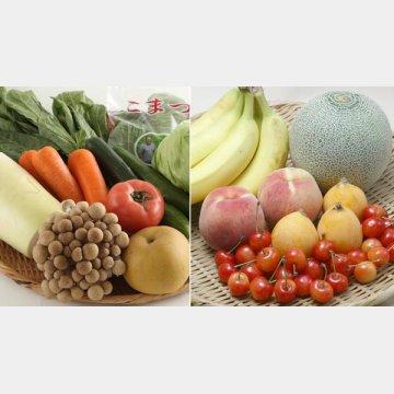 野菜や果物の摂取は大事