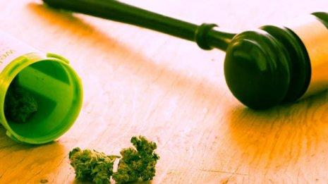 65歳以上に医療大麻の使用者が急増…その背景にあるもの