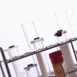 人の細胞や臓器を使ってもあくまで「基礎研究」に過ぎない