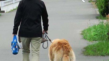 飼い主の健康長寿を支える ペットを飼うことのすごい効果