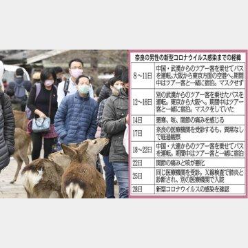 マスク姿で奈良公園を訪れた観光客ら