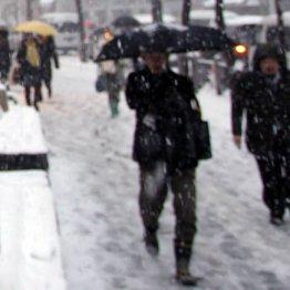 雪道で足を滑らせ尻もちを…どこかを骨折しているのか?