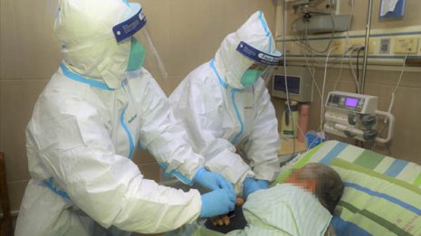 白血球の2割~4割 病原体を攻撃する「リンパ球」の機能