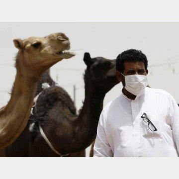 MERS(中東呼吸器症候群)は2012年に初めて確認された(サウジアラビアのラクダ市場でマスクをする男性)