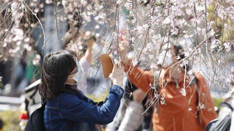 血糖コントロールは冬に悪くなる 春はリカバリーに注力を