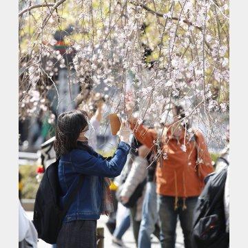 春はリカバリーに力を入れる