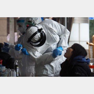 検査まで進むのは全体の4%(写真は、韓国ソウル新型コロナウイルスのPCR検査)