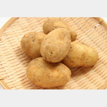 新ジャガイモはビタミンが4倍