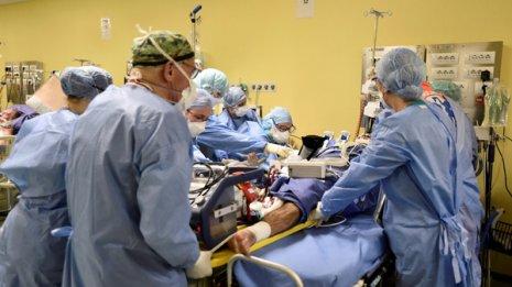 新型コロナウイルス「超過死亡」から見た本当の死亡数