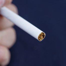 たばこは月に何本までなら健康リスクを抑えられるのか?