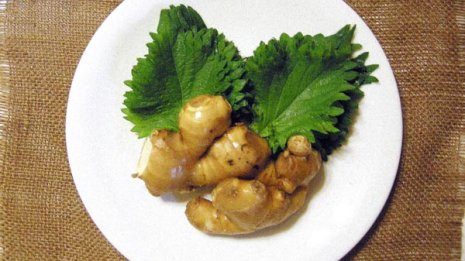 大葉(青じそ)は食後の血糖値上昇を抑える 夕食時に最適