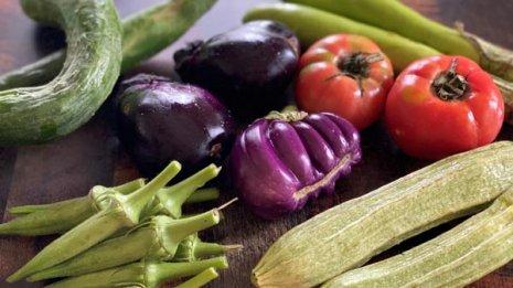形もさまざま!自然栽培の野菜たち
