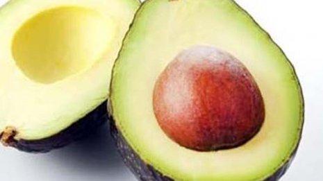 アボカドの高栄養価はギネスも認定 種には認知症予防効果も