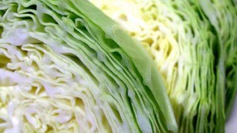 柔らかくみずみずしい春キャベツは胃腸の不調改善におすすめ
