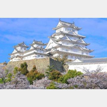 官兵衛同様、「不敗」の城とも呼ばれる姫路城