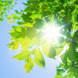 なぜ紫外線は年々強烈になるのか、どんなリスクが潜んでいるのか?
