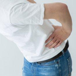 スマホアプリは腰痛に有効か 米の内科専門誌に論文掲載