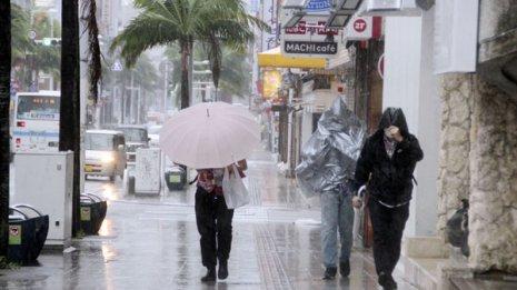 台風シーズンの雨漏りカビが喘息・鼻炎・副鼻腔炎を悪化させる